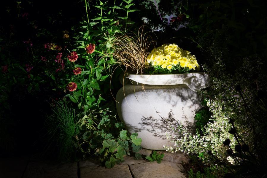 fx_olbrich_gardens_393rt.jpg