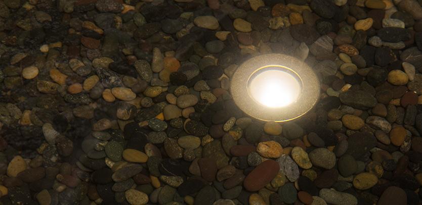 LP Specialty Light