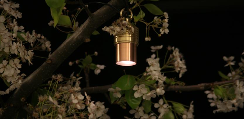 LS Incandescent Down Light