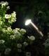 CC Up Light