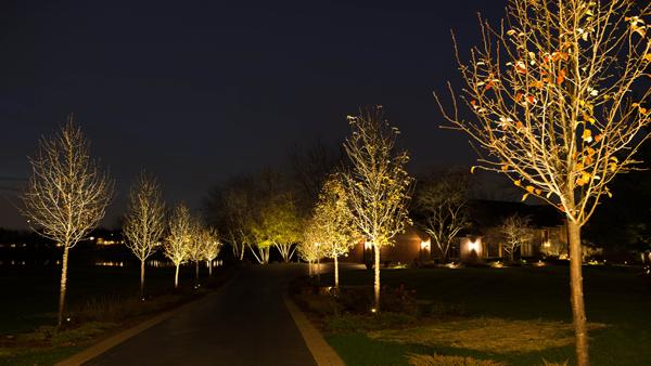 Thebault Residence Fx Luminaire